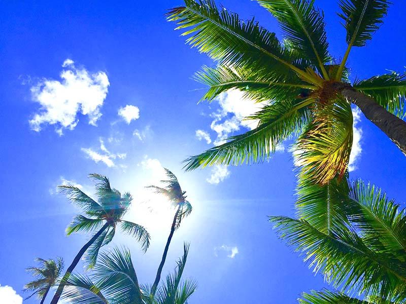 ハワイ,オワフ島,ホノルル